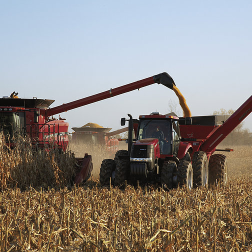 Combine augers being used to harvest Crops in a field